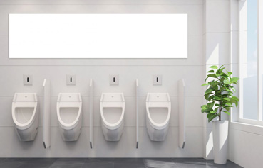 Cleaning of sanitary facilities, washroom products